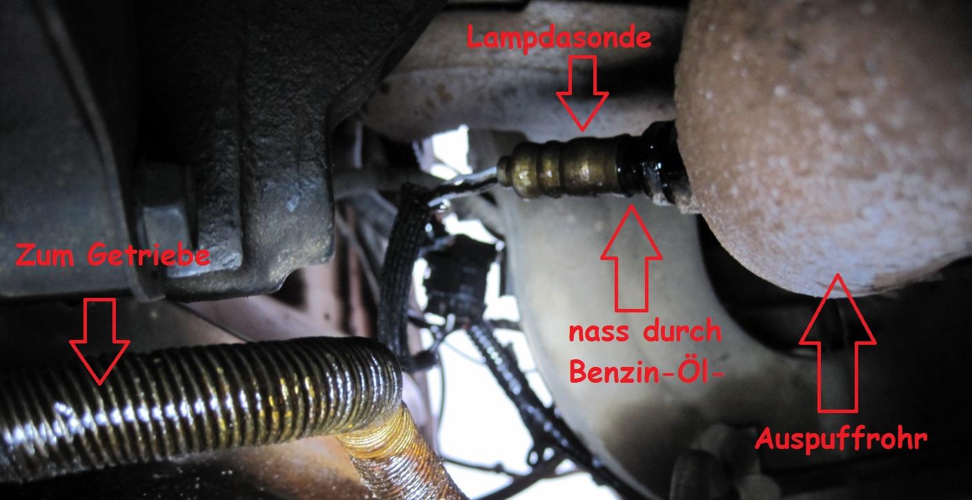 Blick_von_unten_an_Lampdasonde_Auspuff.jpg